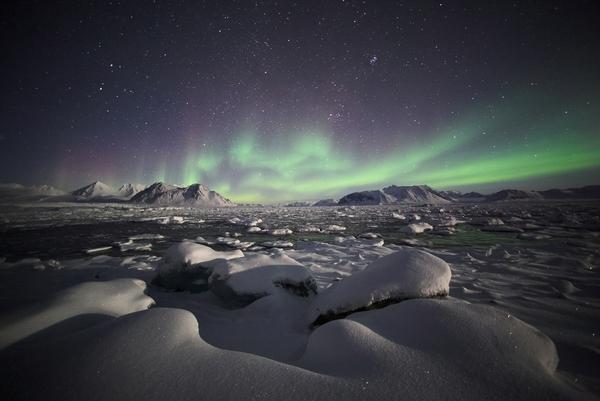 Northern Lights  artikel billede Incredible Arctic  Shutterstock
