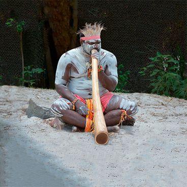 The Aborigines